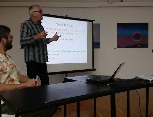 Vela Luka Summer School Lectures
